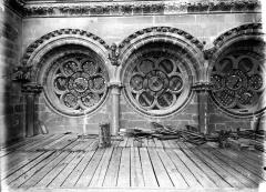 Cathédrale Notre-Dame - Triple oculus sous la rose sud