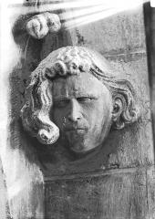Cathédrale Notre-Dame - Tête d'amortissement, chevelure bouclée