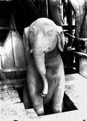 Cathédrale Notre-Dame - Bête d'amortissement, l'éléphant