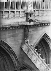 Cathédrale Notre-Dame - Cariatide et gargouille, façade nord, sixième travée