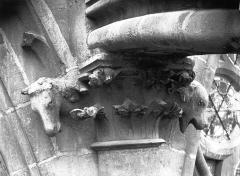 Cathédrale Notre-Dame - Chapiteau, feuillages et animaux, contrefort de la nef, façade sud
