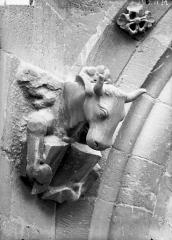 Cathédrale Notre-Dame - Bras nord du transept, le boeuf de saint Luc, après restauration