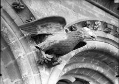 Cathédrale Notre-Dame - Bras nord du transept, l'Aigle de saint Jean, après restauration