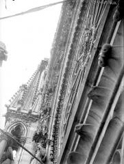 Cathédrale Notre-Dame - Portail ouest, rose, voussure gauche