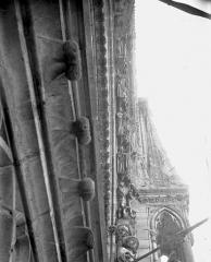 Cathédrale Notre-Dame - Portail ouest, rose, voussure droite