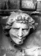 Cathédrale Notre-Dame - Tête d'amortissement d'arc, le Siffleur