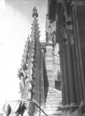 Cathédrale Notre-Dame - Pignon du portail, profil