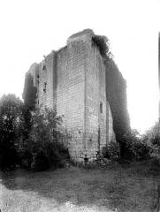 Ancien château - Donjon de l'Islot, extérieur