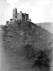 Vestiges du château et sa deuxième enceinte - Vue à distance au sommet d'une colline