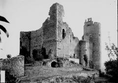 Vestiges du château et sa deuxième enceinte - Ensemble sud-ouest