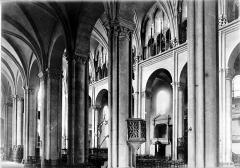 Cathédrale Saint-Jean et Saint-Etienne - Nef