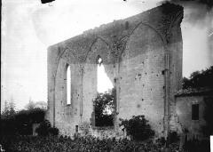 Ancienne église du couvent des Dominicains, dit des Jacobins - Grand mur gothique au milieu des vignes dit la Grande Muraille : Mur nord de la nef