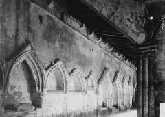 Eglise collégiale Saint-Emilion - Enfeus dans le cloître : vue perspective