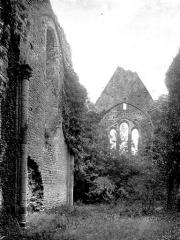 Restes de l'ancienne collégiale Saint-Georges - Nef ruinée