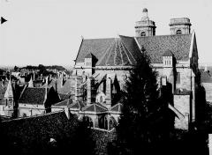 Cathédrale Saint-Mammes - Ensemble est