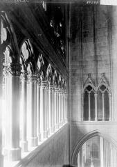 Cathédrale Notre-Dame - Triforium, détail