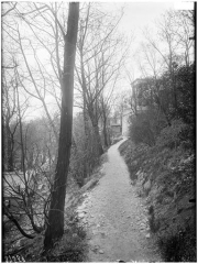 Cimetière de l'Est dit cimetière du Père Lachaise - Chemin des Chèvres : vue des allées