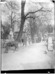 Cimetière de l'Est dit cimetière du Père Lachaise - Vue des allées